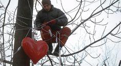 Niektóre miasta na Walentynki przygotowują specjalne dekoracje