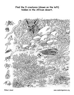 Find the things hidden in the Sahara Desert Habitats. Colouring Pages, Coloring Books, Hidden Pictures Printables, Desert Biome, Hidden Picture Puzzles, Mind Gym, Hidden Objects, Funny Animal Quotes, Find Picture