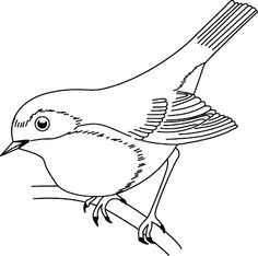 Top 10 Hummingbird Coloring Pages For Your Toddler Quilling Patterns, Stencil Patterns, Bird Embroidery, Hand Embroidery Patterns, Bird Drawings, Easy Drawings, Robin Drawing, Bird Coloring Pages, Colouring