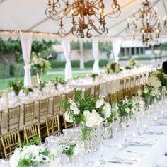 Love tent weddings