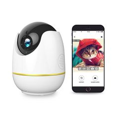 10 Best Wireless IP Security Cameras to Monitor Your Kids or Pets