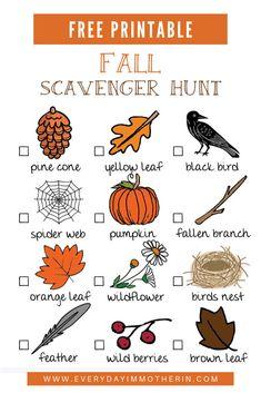 Fall Preschool, Preschool At Home, Preschool Activities, Preschool Lessons, Kindergarten Worksheets, Educational Activities, Fun Activities To Do, Autumn Activities, Toddler Activities