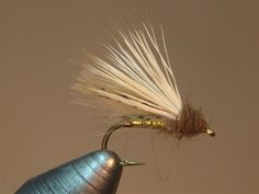 Missouri CDC Caddis SBS | Washington Fly Fishing