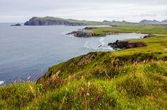 The beautiful and rugged coastline of the Dingle Peninsula; the westernmost edge of Ireland. [OC][37752500] #reddit