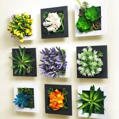 This faux wall garden:   Community Post: 21 Brilliant Ways For Plant Lovers To Decorate Their Homes