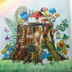 Floresta encantada. Fonte: facebook