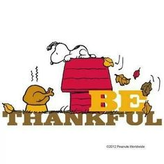 Image result for Snoopy thankful