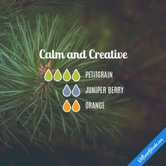 Calm and Creative - Essential Oil Diffuser Blend