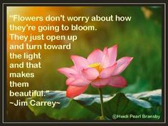"""Flowers don't worry about how they're going to bloom. They just open up and turn toward the light and that makes them beautiful."" ~Jim Carrey Quote by Heidi Pearl Bransby"