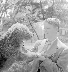 A teenage boy in a suit, playing with airedale in Des Moines, IA in c.1945. (2)