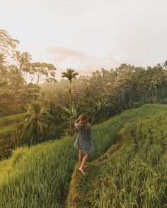 The Ultimate Bali Travel Guide. what to do in bali indonesia travel guide Bali Travel Guide, Us Travel, Vietnam Travel, Thailand Travel, Photoshoot Concept, South America Travel, Ubud, France Travel, Australia Travel