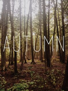 The leaves are changing, the air is cooler; it's time to pull out your sweaters and scarves and turn up this Autumn Playlist