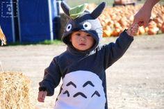 Totoro~~!!!