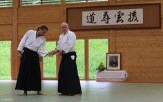Aikidolehrgang im Budokan Wels / Oberösterreich, Mai 2014: Vorzeigen einer Aikidotechnik