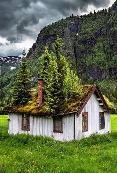Forgotten In Norway