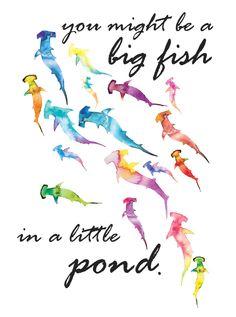 big fish, lil pOnd