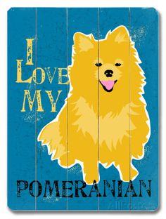 I Love My Pomeranian Placa de madeira na AllPosters.com.br