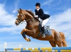 Horse riding hats for all disciplines including show jumping, cross country, dressage, western style rodeo hats and more.