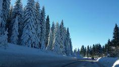 My winter !  ♡