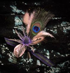 Using Peacock feathers from our farm. Scottish Flowers, Second Weddings, Flower Farm, Peacock Feathers, Florals, Daisy, Floral, Flowers, Margarita Flower