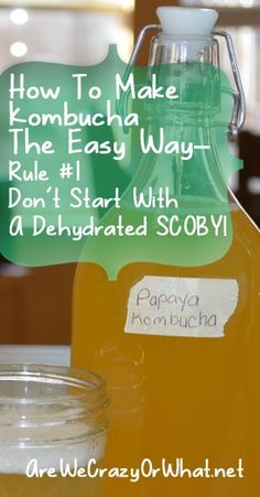 How to make Kombucha tea the easy way and avoid problems with a dehydrated SCOBY. (How To Make Good Tea) Probiotic Foods, Fermented Foods, Milk Shakes, Kombucha How To Make, Making Kombucha, Kombucha Tea, Homemade Detox, Detox Tea, Healthy Drinks