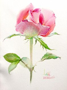 Watercolor without drawing by LaFe Watercolor Artwork, Watercolor And Ink, Watercolor Flowers, Vintage Flowers Wallpaper, Floral Drawing, Rose Art, Botanical Art, Flower Art, Illustration