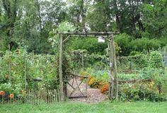 vegetable garden with flowers mixed in....especially marigolds to help with insect control.....