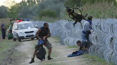 Hungarian police positioned nearby watch as Syrian migrants climb under a fence to enter Hungary at ... - Bereitgestellt von Süddeutsche.de