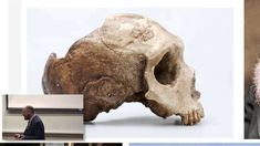 Probing Human Ancestry with Ancient DNA