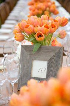 Love these orange tulip wedding centerpieces Wedding Centerpieces, Wedding Table, Our Wedding, Dream Wedding, Wedding Decorations, Tulip Centerpieces, Rustic Wedding, Reception Table, Tulip Wedding