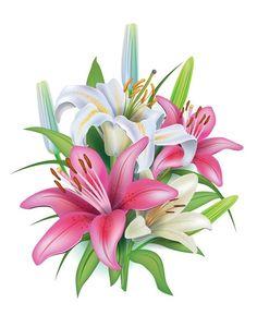 декоративные элементы,клипарт «цветочный» png. Обсуждение на LiveInternet - Российский Сервис Онлайн-Дневников