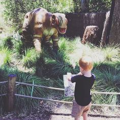 Wellbeing and Resilience for every Wild Child regardless of age. Learning Through Play, Wild Child, Dinosaurs, Early Childhood, Ivy, Parenting, Relationship, Children, Young Children