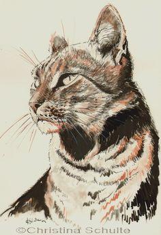Cat    Christina Schulte