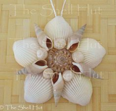 Seashell Flower Shell Star Christmas Ornament Wall by shellhut