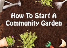 how to start a community garden copy