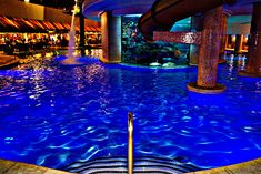 THE TANK Golden Nugget Las Vegas world famous pool.**We will definitely be staying here our next time in Vegas Baby!!!