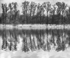 Albert Renger-Patzsch  River Rhine (backwater)  1950s