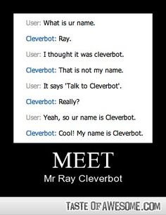 Funny - Meet Cleverbot, also known as Ray.