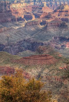 Grand Canyon National Park, AZ.  Photo: gordeau, via Flickr