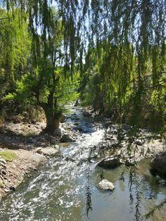 Selegua river