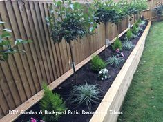 DIY Gartenzaun Ideen zum Schutz Ihrer Pflanzen Tags: Einfacher DIY Gartenzaun - Ce Que Vous Devez Savoir Sur Le Jardinage Small Garden Fence, Garden Fencing, Raised Garden Beds, Easy Garden, Raised Beds, Conifer Plants, Flowering Shrubs, Garden Plants, Cheap Patio Furniture