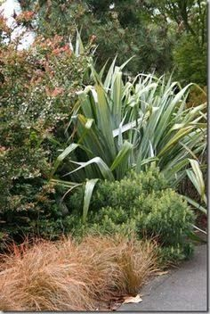 landscaping a steep slope nz - Google Search