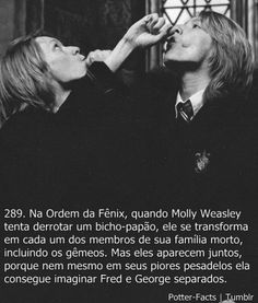 Aprendi Com Harry Potter - - Wattpad Harry James Potter, Harry Potter Tumblr, Memes Do Harry Potter, Mundo Harry Potter, Harry Potter Pictures, Harry Potter Drawings, Harry Potter Cast, Harry Potter Anime, Potter Facts