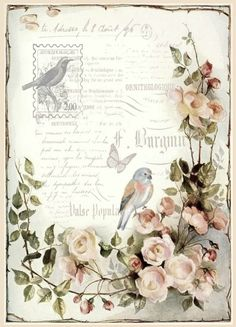 Bird on light pink roses, bird stamp.
