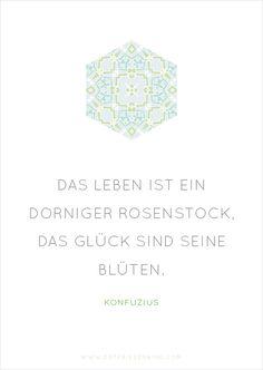 Konfuzius - Zitat No. 7 Postkarten Set 3: Das Leben ist ein dorniger Rosenstock, das Glück sind seine Blüten.