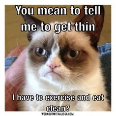 #grumpycat knows whats up!