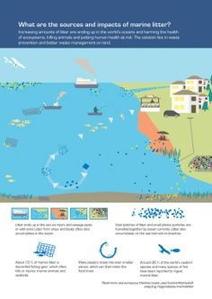 What are the sources and impacts of marine litter? — European Environment Agency (EEA)