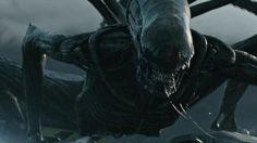 Alien – Covenant: il nuovo Xenomorfo inizia la caccia