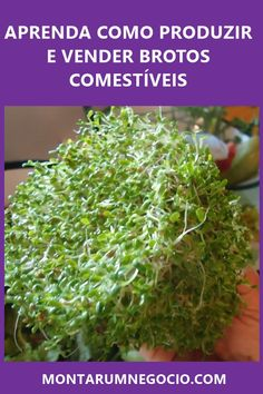Kefir, Growing Vegetables, Raw Food Recipes, Garden Projects, Vegetable Garden, Beautiful Gardens, Gardening Tips, Food And Drink, Health