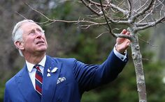 Prince Charles intends to continue campaigning when he becomes King - Telegraph